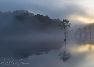 Fog On The Mountain Fork River